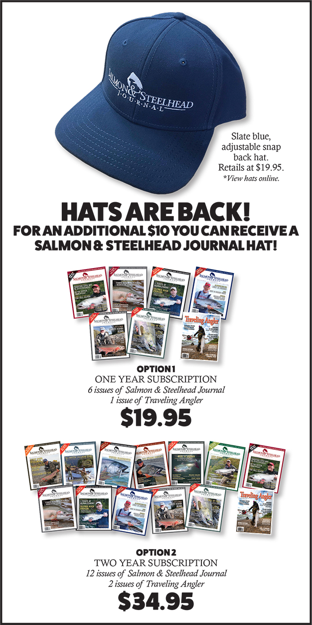 hats-are-back-webad