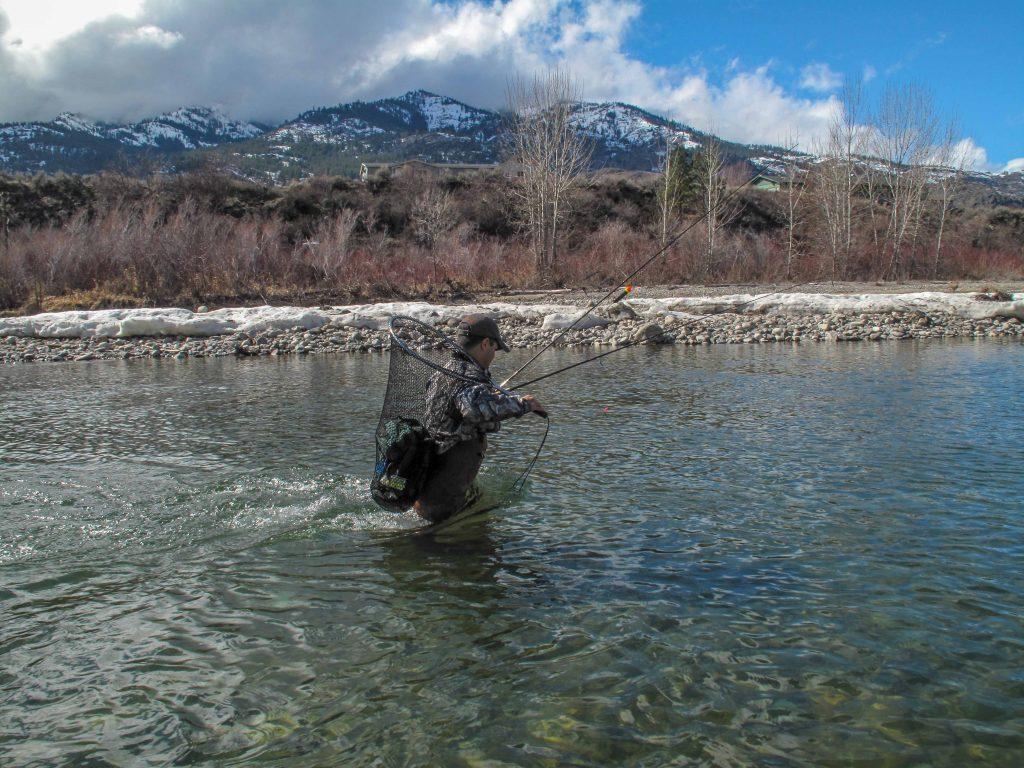 The Science Behind Brining Bait For Salmon – Salmon & Steelhead Journal