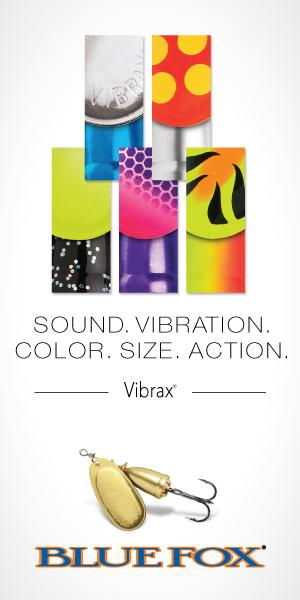 BF-Vibrax-Sound-Vibration-300×600