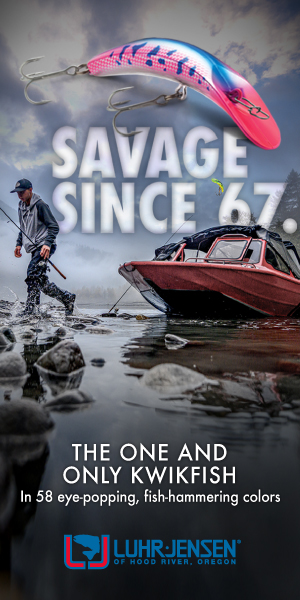 LJ_Kwikfish_savage_digitalbanners_300x600