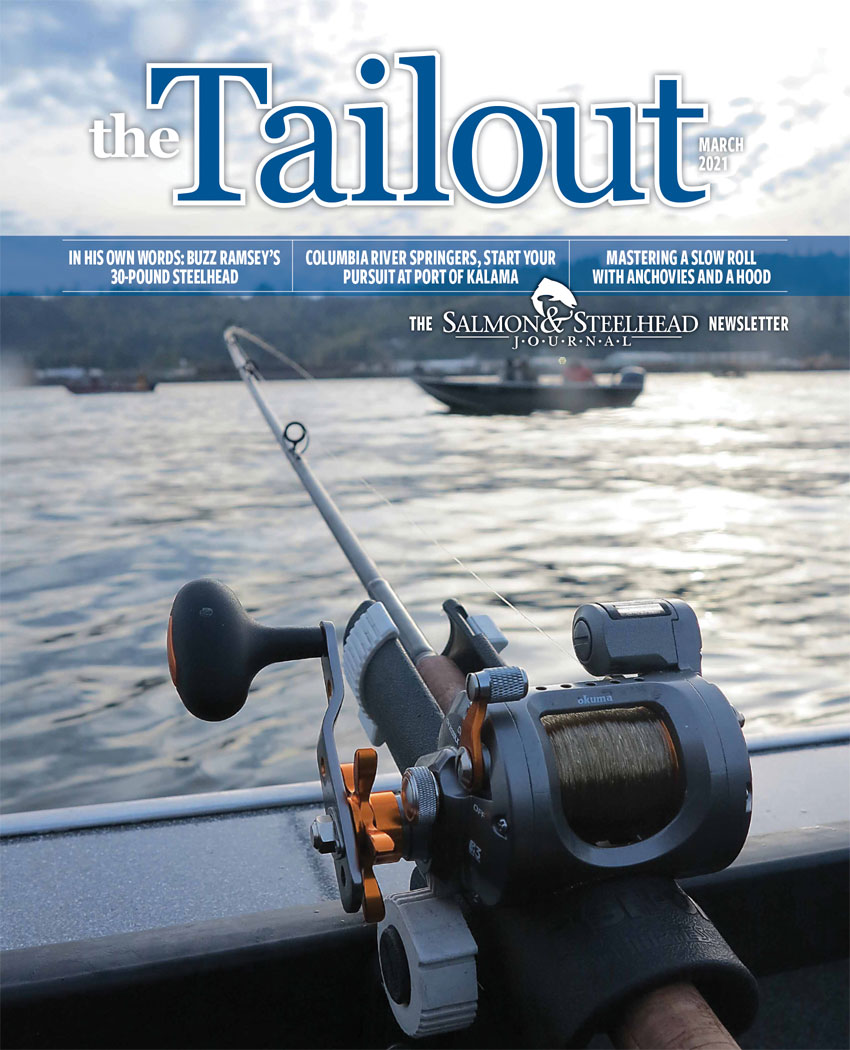 Tailout March 21